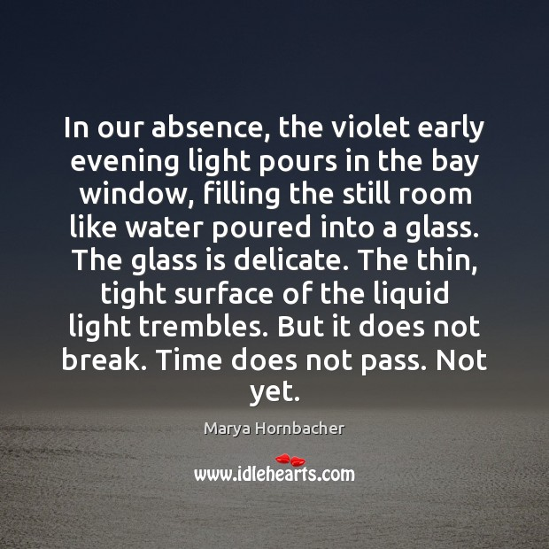 In our absence, the violet early evening light pours in the bay Marya Hornbacher Picture Quote