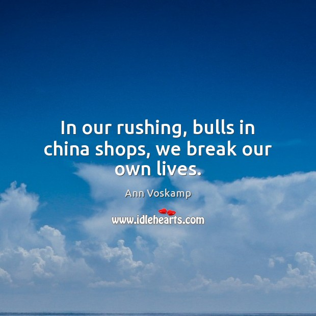 Image, In our rushing, bulls in china shops, we break our own lives.