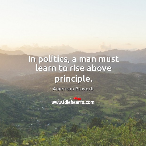 In politics, a man must learn to rise above principle. American Proverbs Image