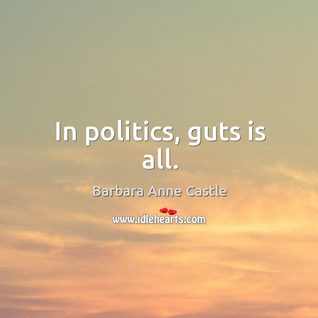 Image, In politics, guts is all.