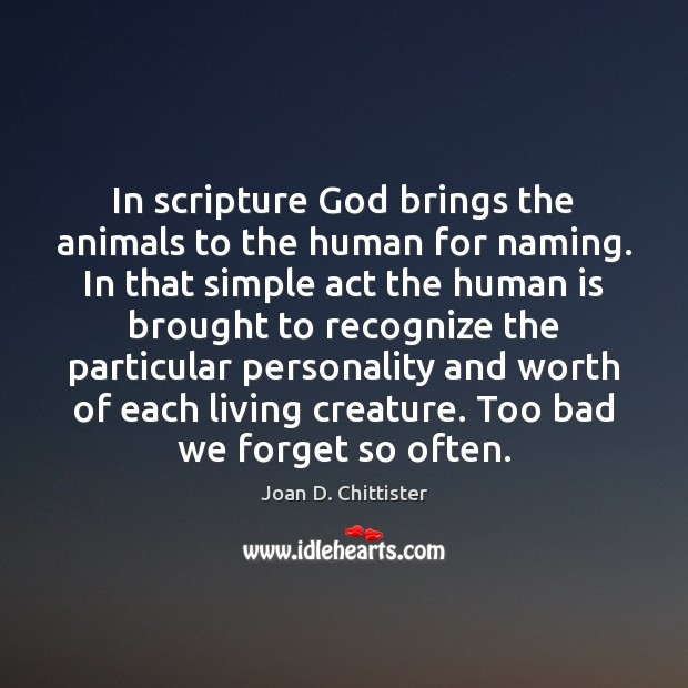 Image, In scripture God brings the animals to the human for naming. In