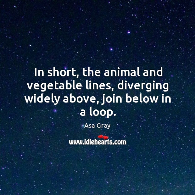 Image, In short, the animal and vegetable lines, diverging widely above, join below in a loop.