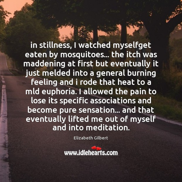 In stillness, I watched myselfget eaten by mosquitoes… the itch was maddening Elizabeth Gilbert Picture Quote