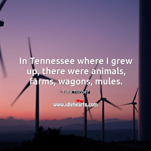 In tennessee where I grew up, there were animals, farms, wagons, mules. Image