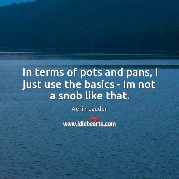 In terms of pots and pans, I just use the basics – Im not a snob like that. Aerin Lauder Picture Quote