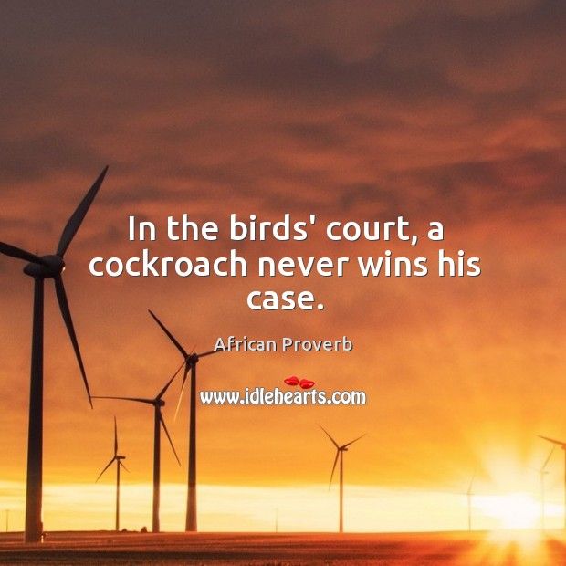 Image, In the birds' court, a cockroach never wins his case.