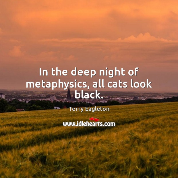 In the deep night of metaphysics, all cats look black. Image