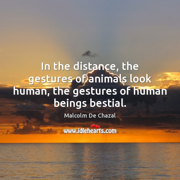 Image, In the distance, the gestures of animals look human, the gestures of human beings bestial.