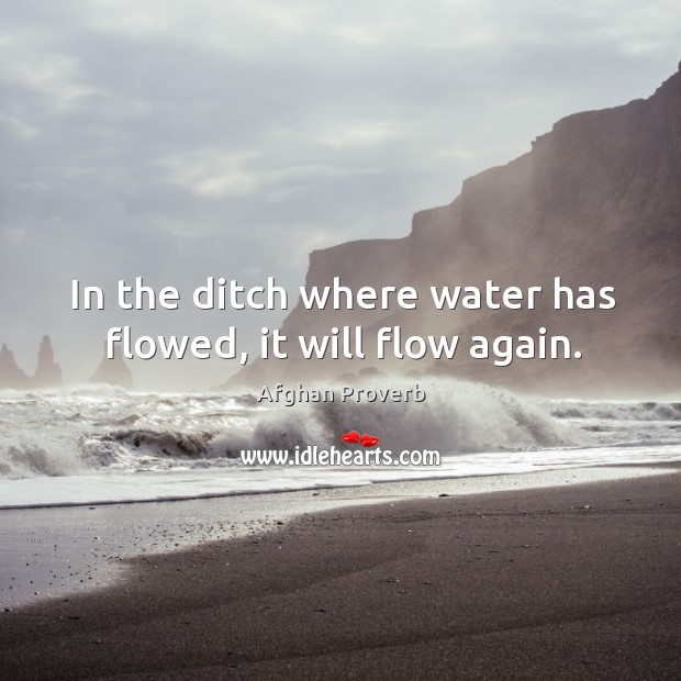 In the ditch where water has flowed, it will flow again. Image