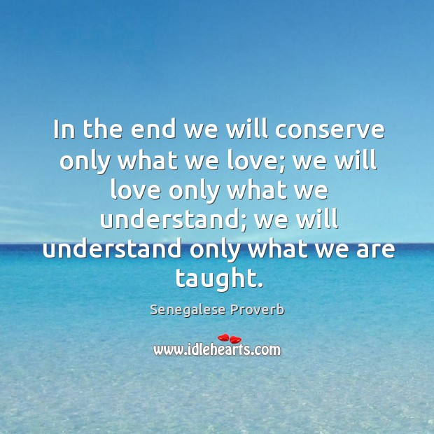 In the end we will conserve only what we love Image