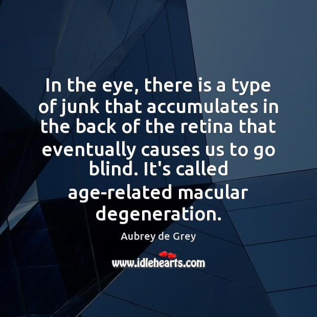 Image, In the eye, there is a type of junk that accumulates in