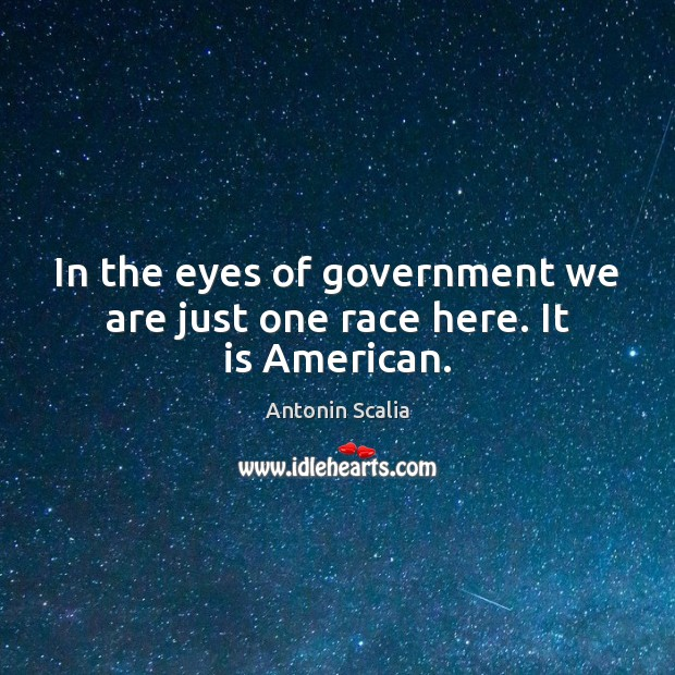 Image, In the eyes of government we are just one race here. It is American.