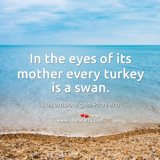 In the eyes of its mother every turkey is a swan. Luxembourgan Proverbs Image