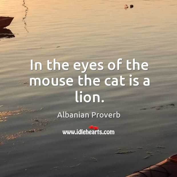 In the eyes of the mouse the cat is a lion. Albanian Proverbs Image