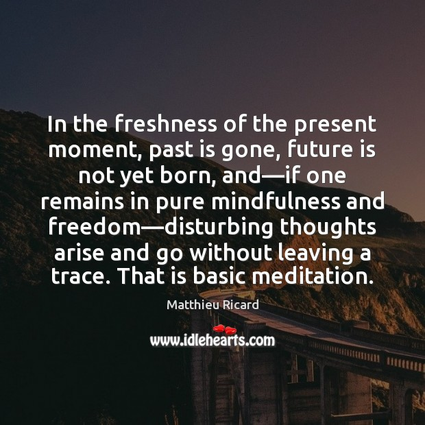 In the freshness of the present moment, past is gone, future is Matthieu Ricard Picture Quote