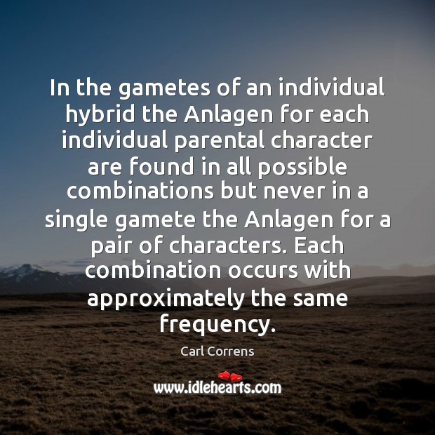 In the gametes of an individual hybrid the Anlagen for each individual Image