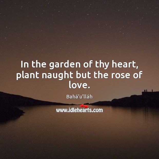 In the garden of thy heart, plant naught but the rose of love. Image