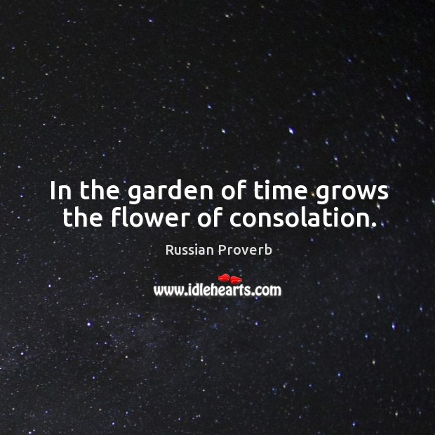 Image, In the garden of time grows the flower of consolation.