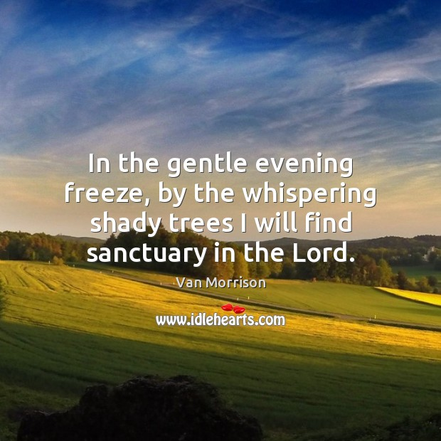 Image, In the gentle evening freeze, by the whispering shady trees I will