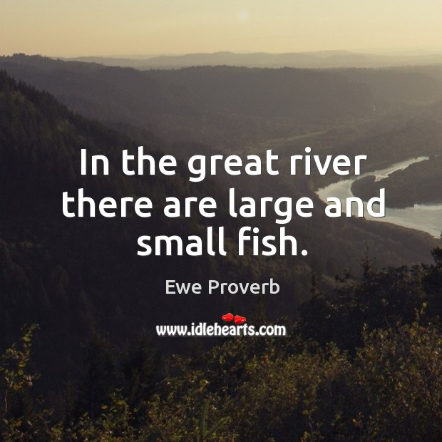 In the great river there are large and small fish. Ewe Proverbs Image
