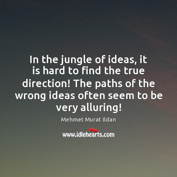 In the jungle of ideas, it is hard to find the true Image