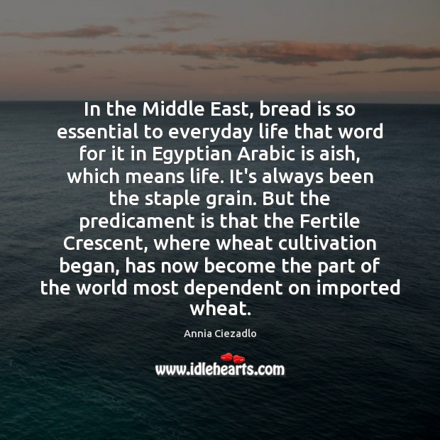 Image, In the Middle East, bread is so essential to everyday life that