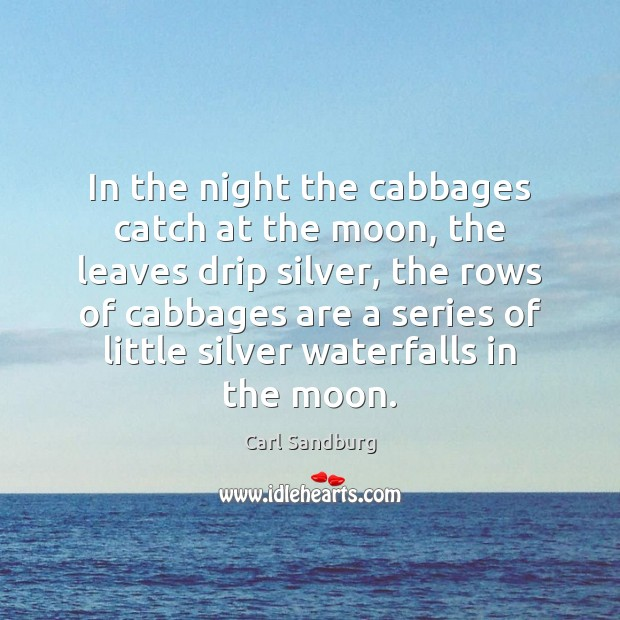 Image, In the night the cabbages catch at the moon, the leaves drip