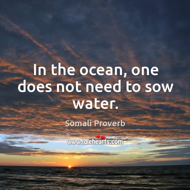 Image, In the ocean, one does not need to sow water.