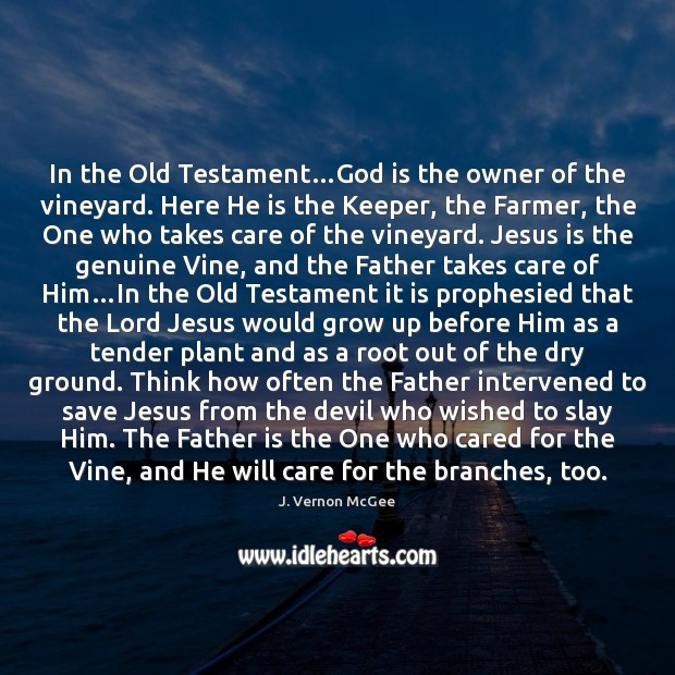 In the Old Testament…God is the owner of the vineyard. Here Father Quotes Image