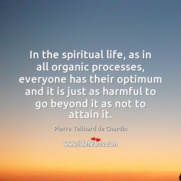 In the spiritual life, as in all organic processes, everyone has their Image