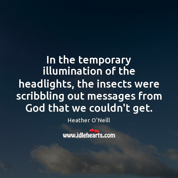 In the temporary illumination of the headlights, the insects were scribbling out Image