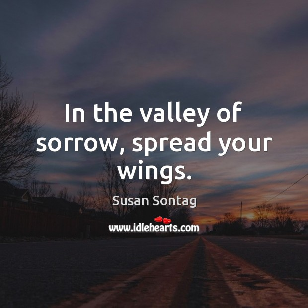 In the valley of sorrow, spread your wings. Susan Sontag Picture Quote