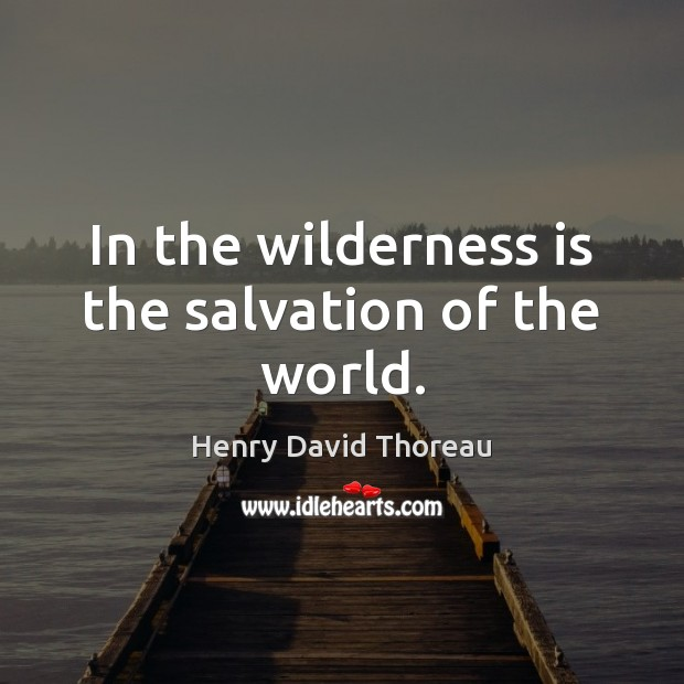 In the wilderness is the salvation of the world. Image