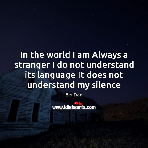 Image, In the world I am Always a stranger I do not understand