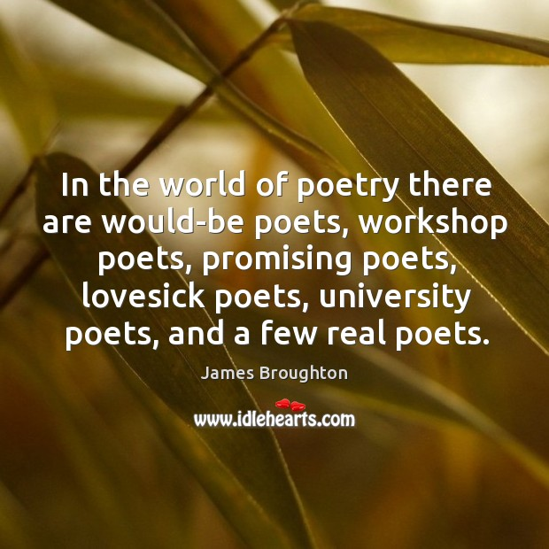 In the world of poetry there are would-be poets, workshop poets Image