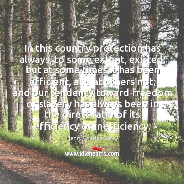 In this country protection has always, to some extent, existed; Henry Charles Carey Picture Quote