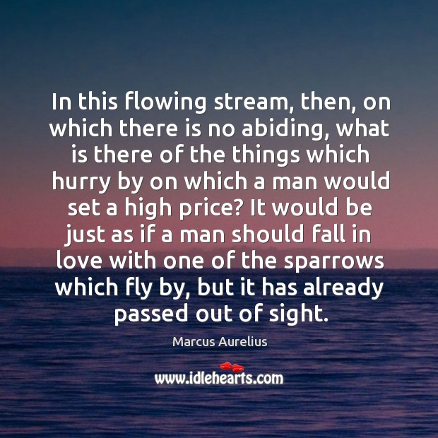 In this flowing stream, then, on which there is no abiding, what Image