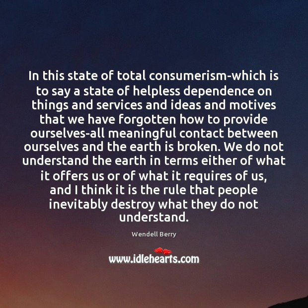 Image, In this state of total consumerism-which is to say a state of