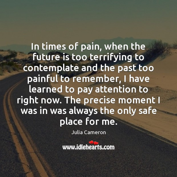In times of pain, when the future is too terrifying to contemplate Julia Cameron Picture Quote