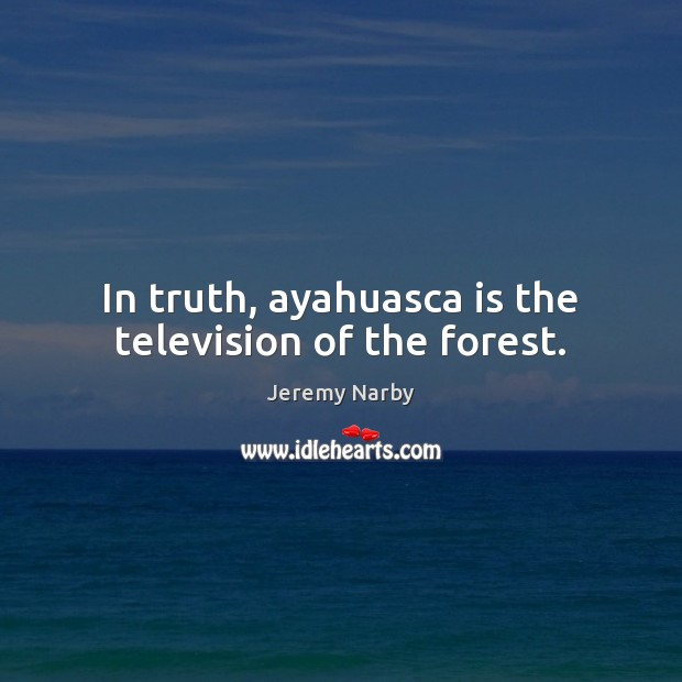 Image, In truth, ayahuasca is the television of the forest.