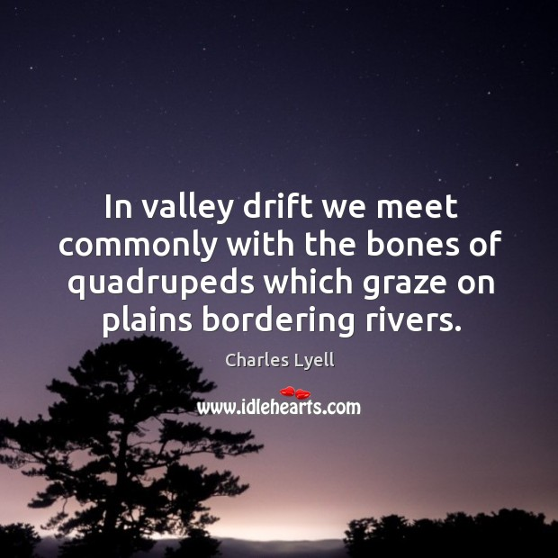In valley drift we meet commonly with the bones of quadrupeds which graze on plains bordering rivers. Image