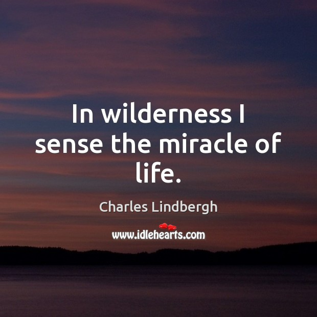 Image, In wilderness I sense the miracle of life.