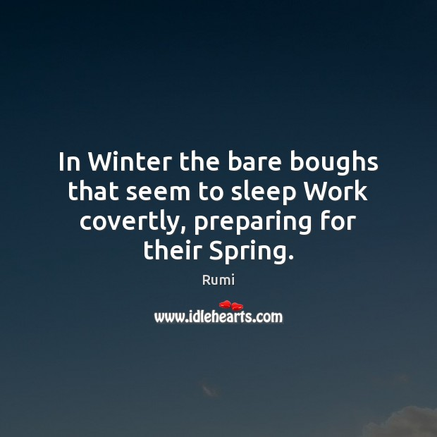 In Winter the bare boughs that seem to sleep Work covertly, preparing for their Spring. Image