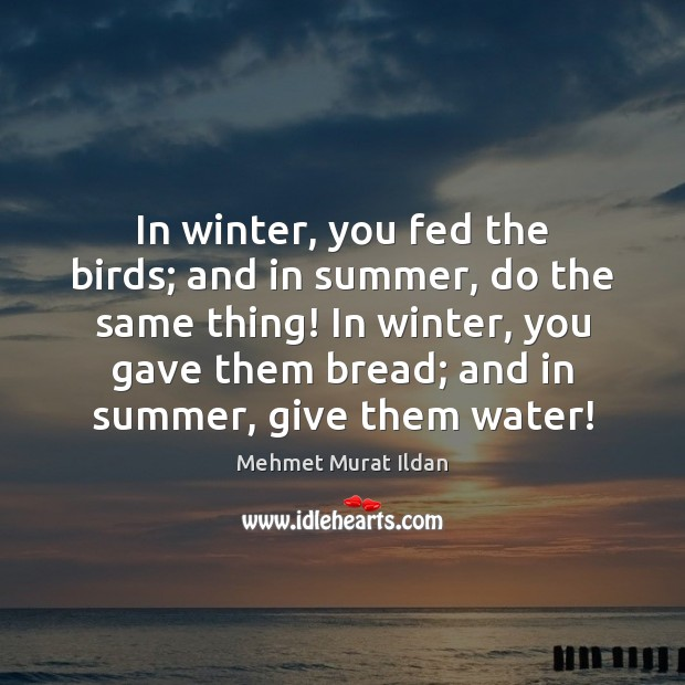 Image, In winter, you fed the birds; and in summer, do the same