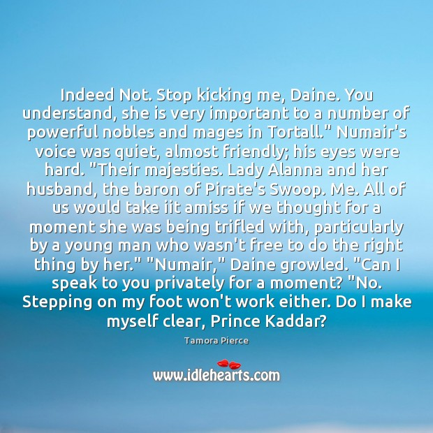 Indeed Not. Stop kicking me, Daine. You understand, she is very important Tamora Pierce Picture Quote