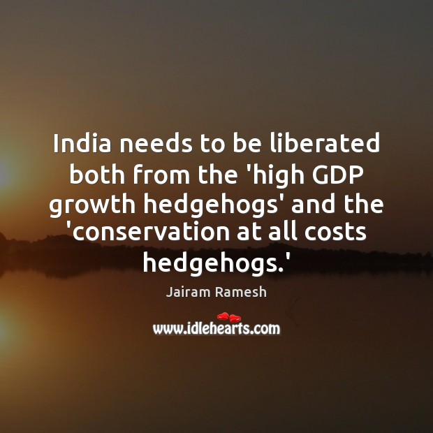 India needs to be liberated both from the 'high GDP growth hedgehogs' Image