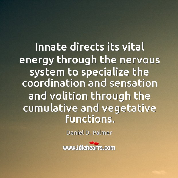 Image, Innate directs its vital energy through the nervous system to specialize the