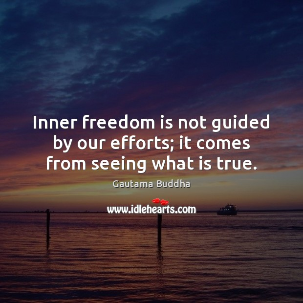 Inner freedom is not guided by our efforts; it comes from seeing what is true. Freedom Quotes Image