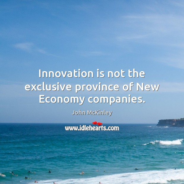 Innovation is not the exclusive province of New Economy companies. John McKinley Picture Quote