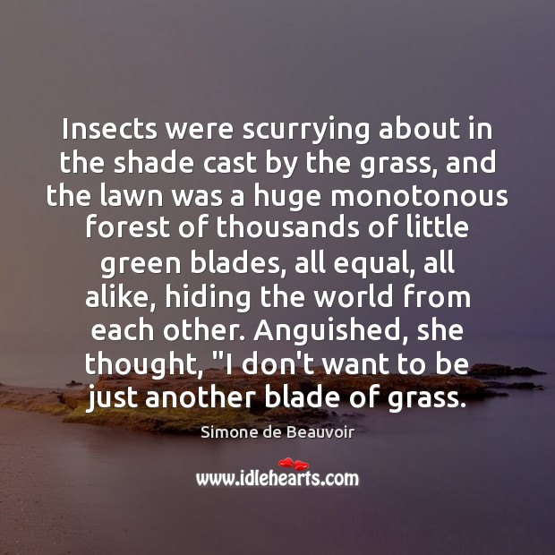 Image, Insects were scurrying about in the shade cast by the grass, and